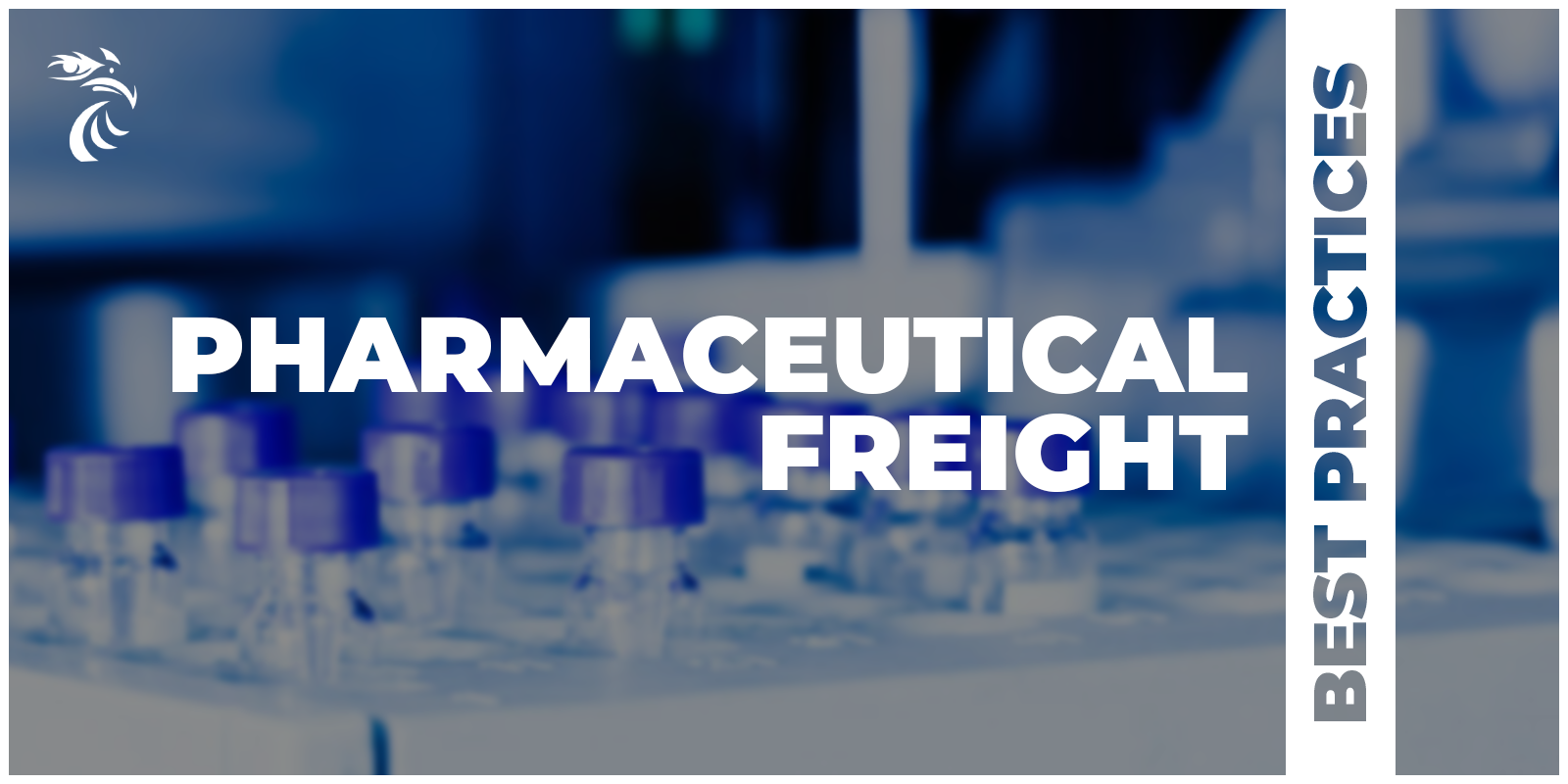 A blurred picture of pharmaceuticals with the title: Pharmaceutical Freight: Best Practices